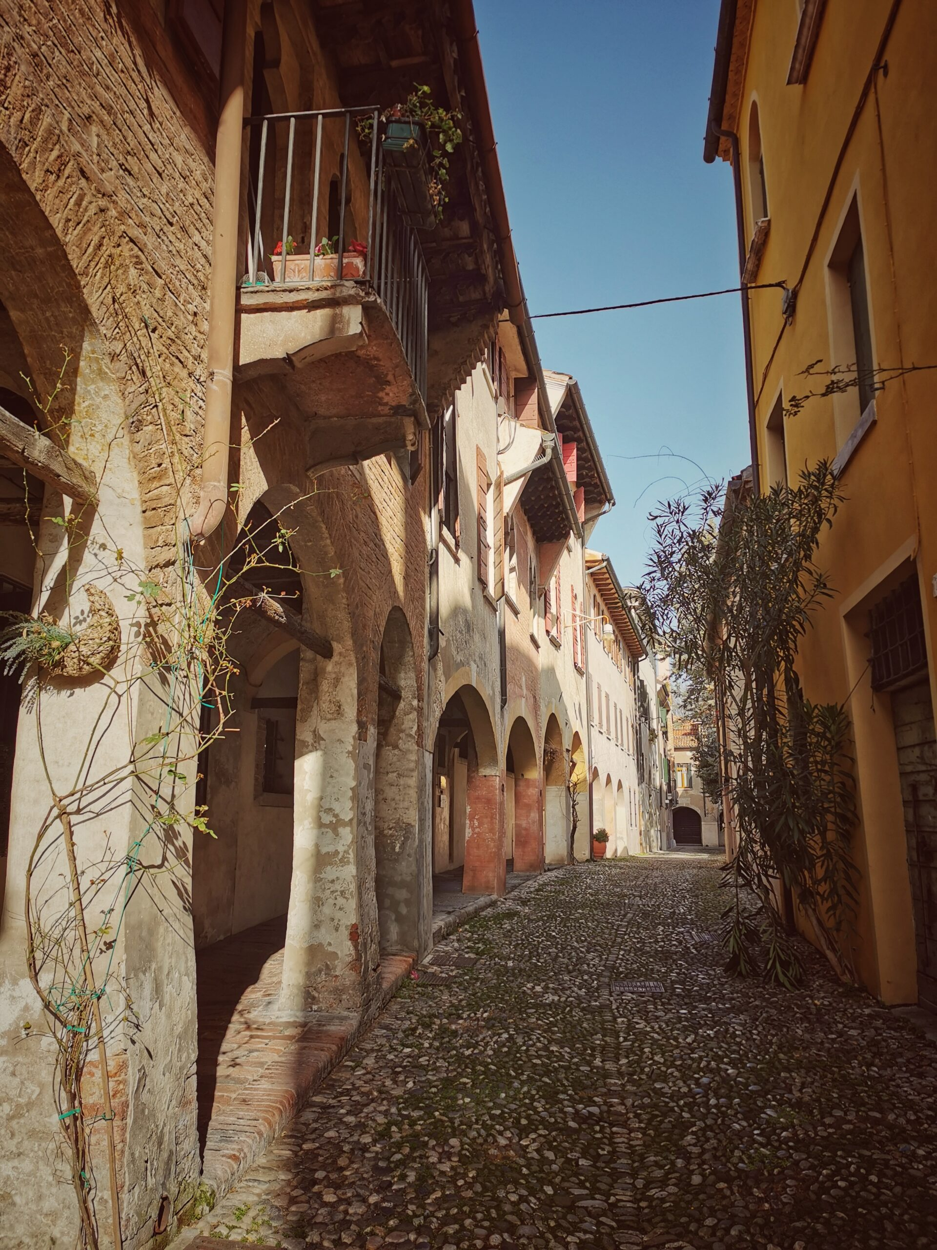 cosa vedere a Treviso il centro storico